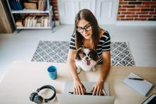 Woman working at a home computer with a dog on her lap